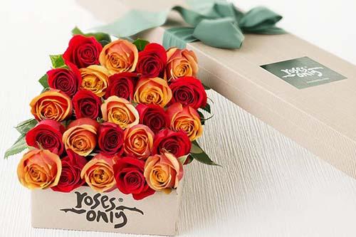 oc-roses-only.jpg