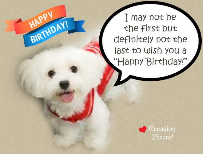 birthday-wishes-cute-animals-doggie01