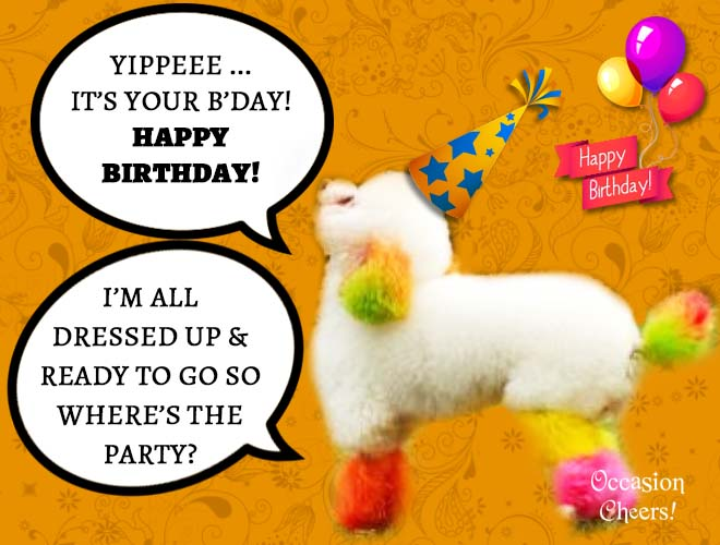 birthday-wishes-cute-animals-doggie04