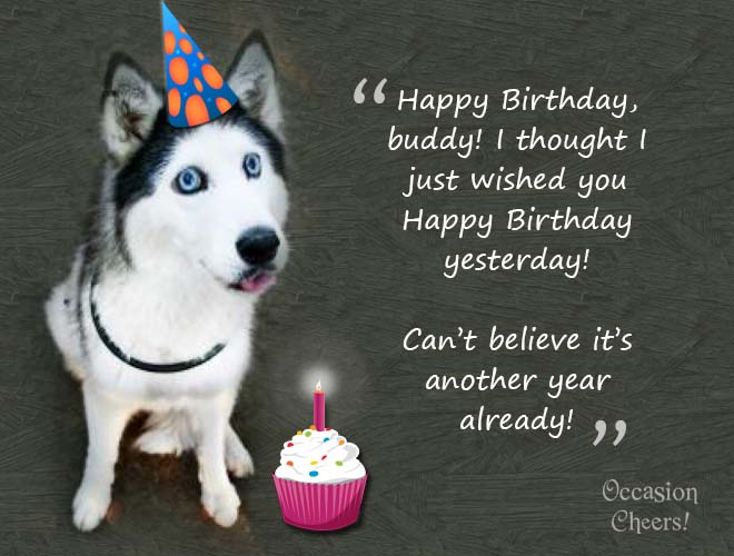birthday-wishes-cute-animals-doggie05