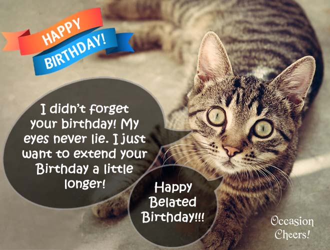 Birthday Wishes Cute Animals Cat 10