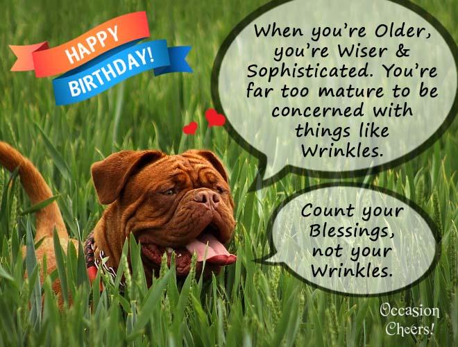 birthday-wishes-cute-animals-dog-06